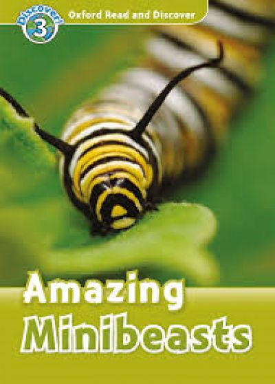 Amazing minibeasts